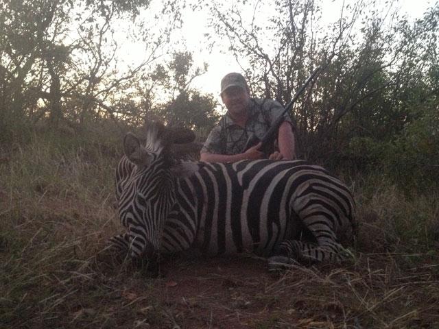 Zebra, 25-06 Rem, 120 gr PlainsMaster, 82 yards, broadside shot.