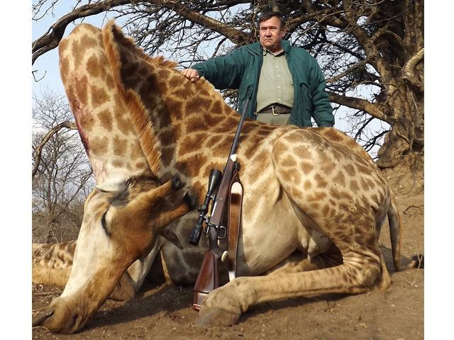 Giraffe, 308 Win, 180 gr BushMaster, 50 yards, broadside