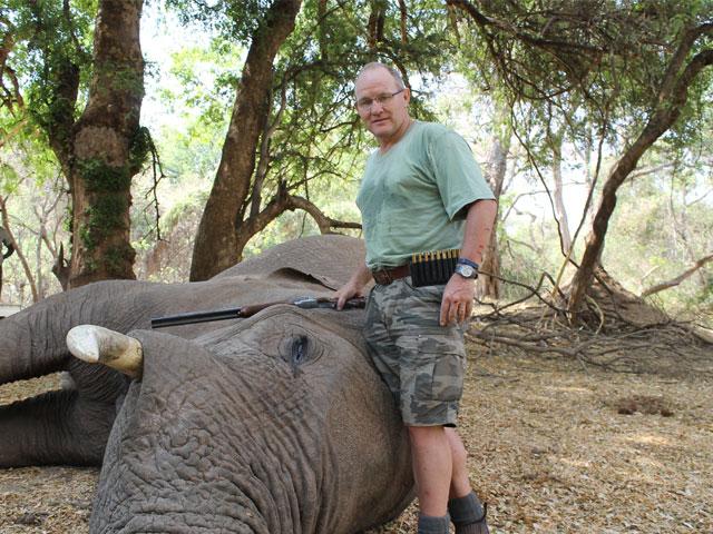 Elephant, 450 NE, 480 gr Solid Copper, 13 yards, full frontal shot.